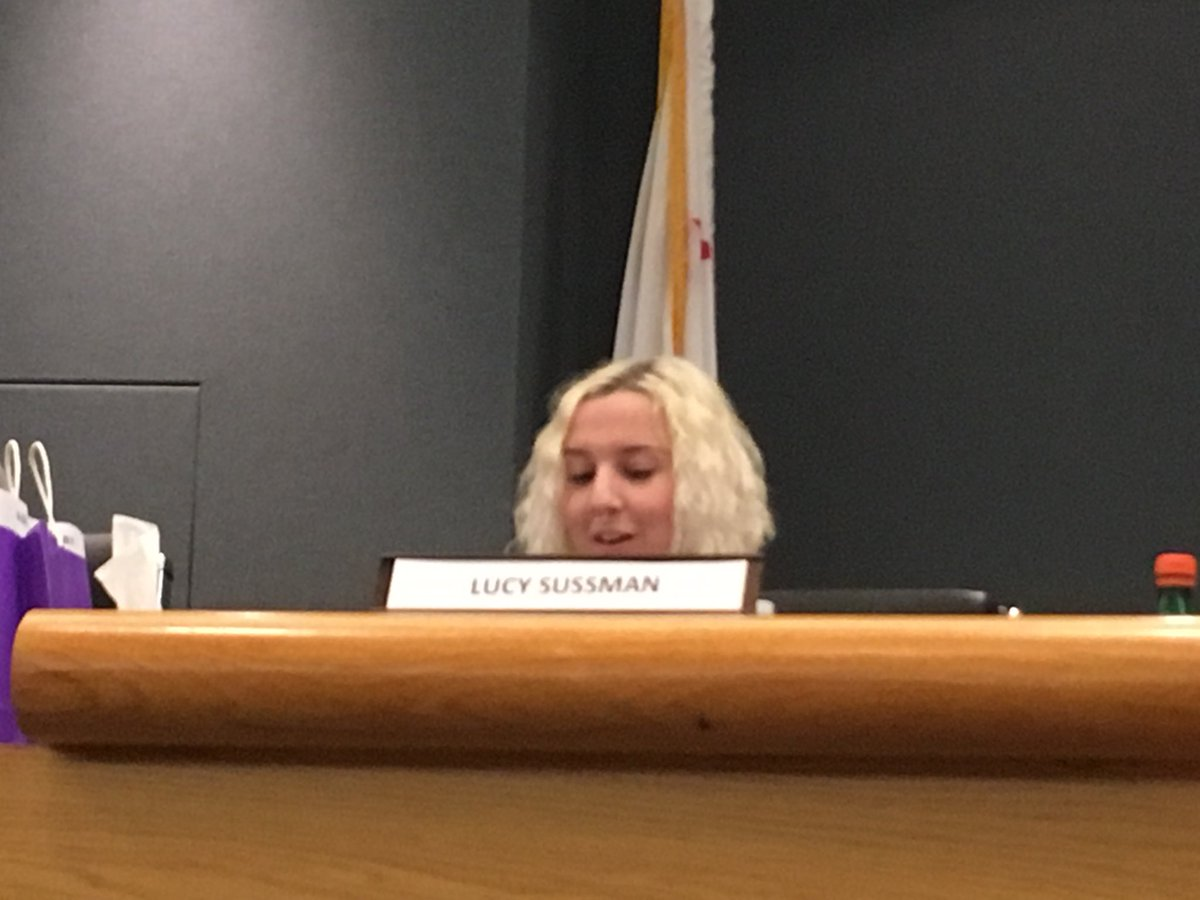 Lucy - CVHS' New School Board Representative